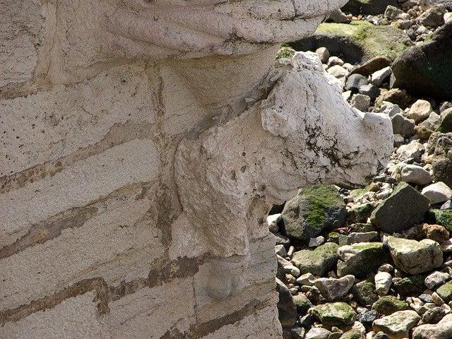 Gárgola del rinoceronte en la torre de Belém