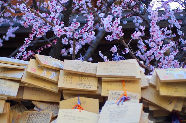 Tablas de deseos en Japón