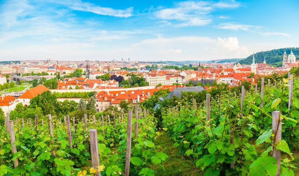 Viñedo de Grebovka, uno de los lugares sorprendentes de Praga