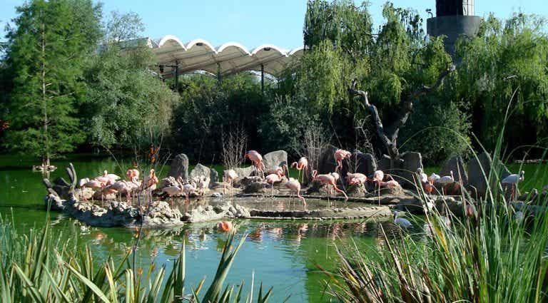 Un día en Faunia, el parque temático de la naturaleza