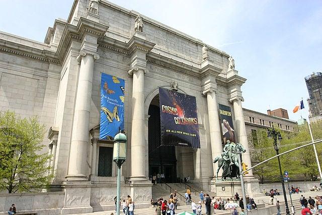 Museo de Historia Natural, una de las cosas que ver en Nueva York