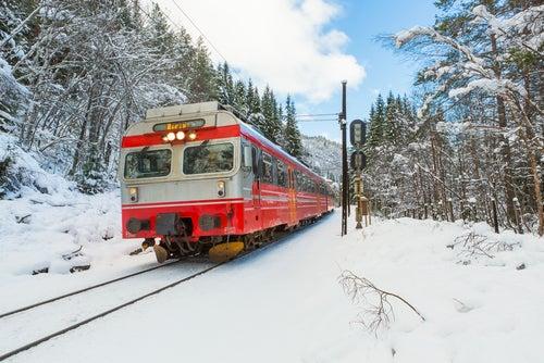 Tren por los fiordos noruegos en invierno