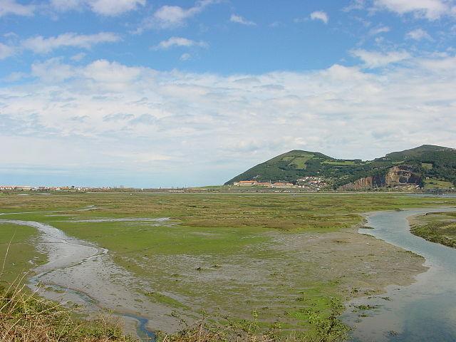 Marismas de Santoña cerca de Noja