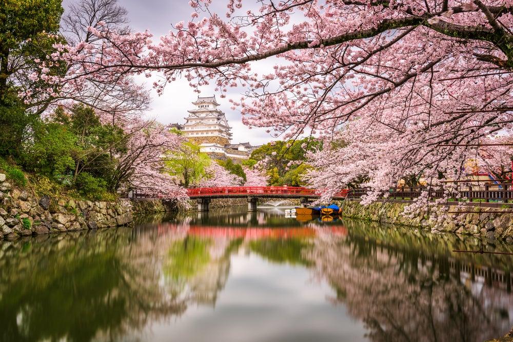 Castillo de Himeji en primavera