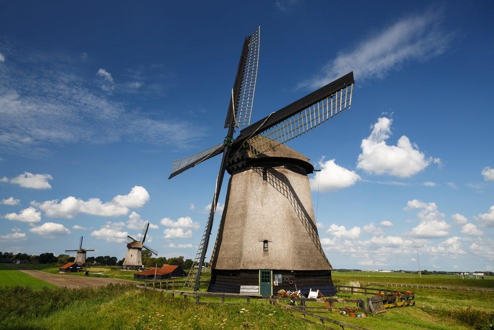 Molinos de viento holandeses en Schermer