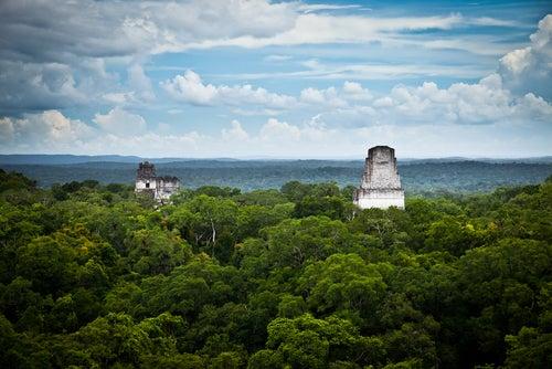 Selva de Petén y Tikal