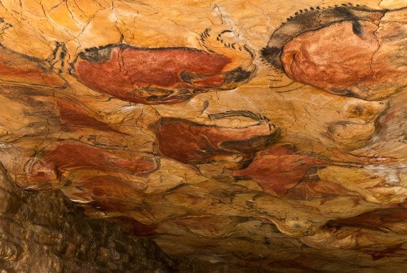 Visitar la cueva de Altamira