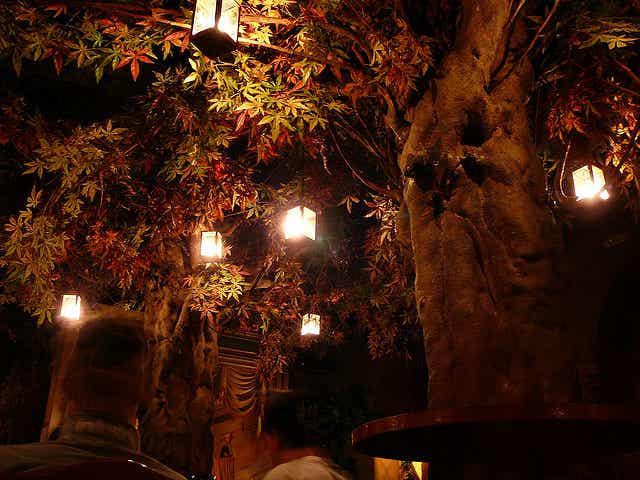 Conoce el Bosc de les Fades en Barcelona