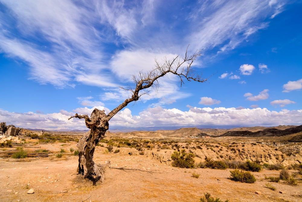 Lugares de película, desierto de Tabernas