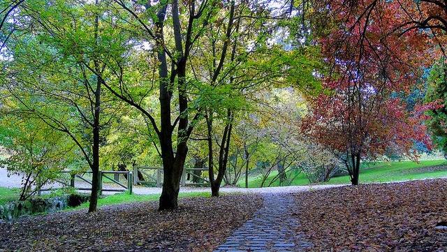 Parque del Oeste de Madrid