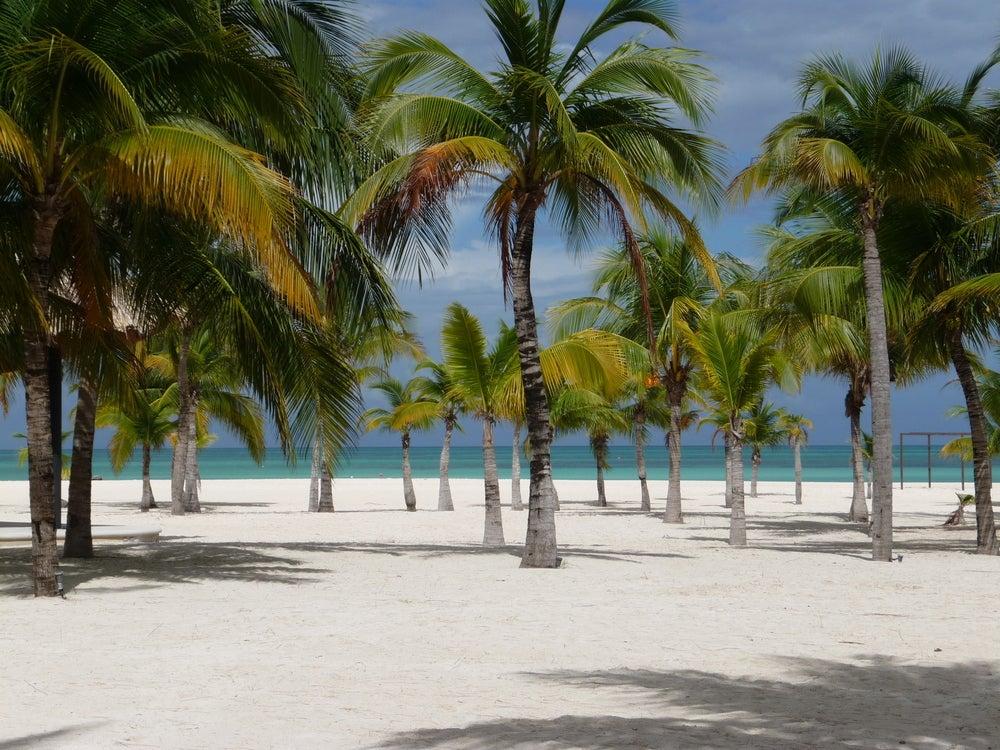 Isla de la Pasión en México