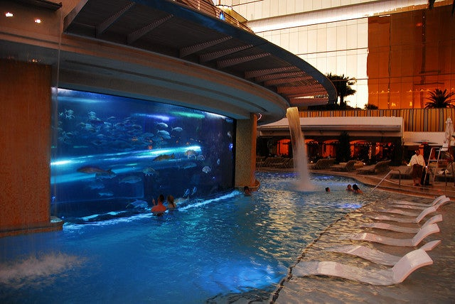Piscina del Hotel Golden Nugget