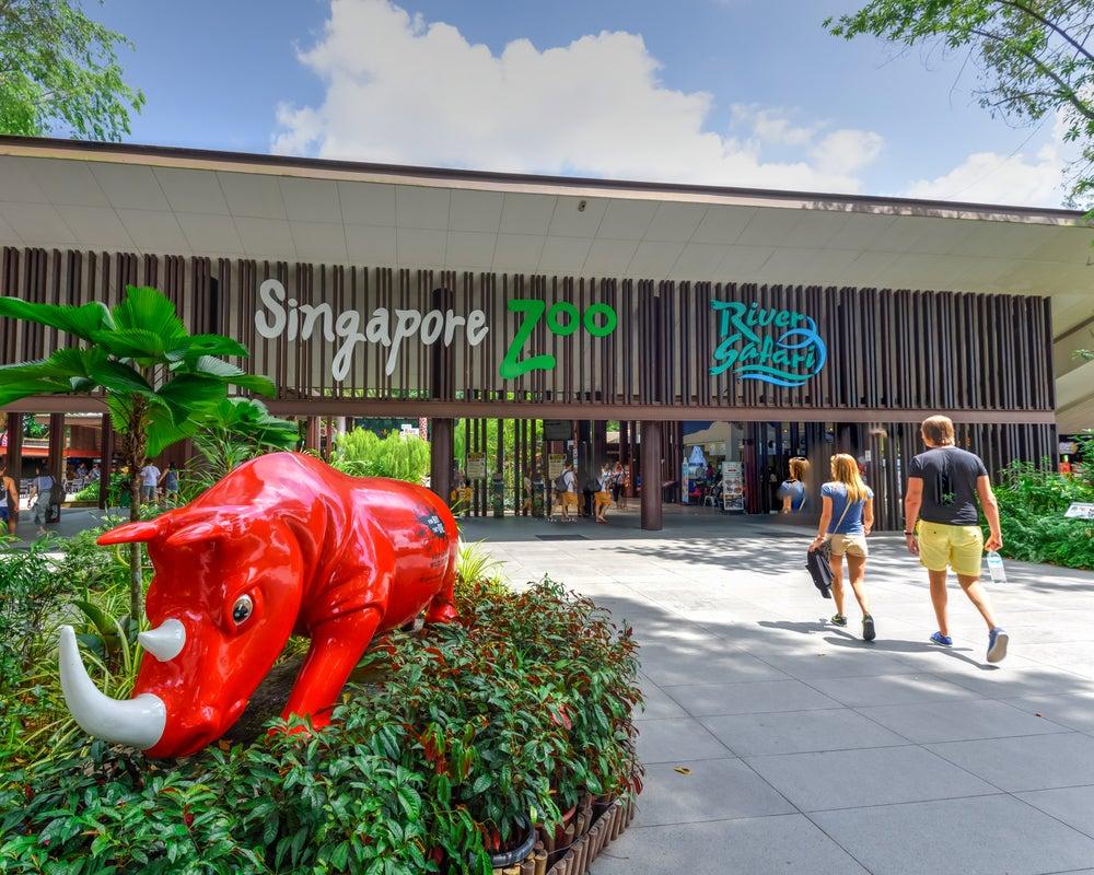 El zoo de Singapur, uno de los mejores de Asia