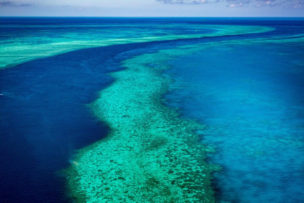 Vista aérea de la Gran Barrera de Coral en Australia