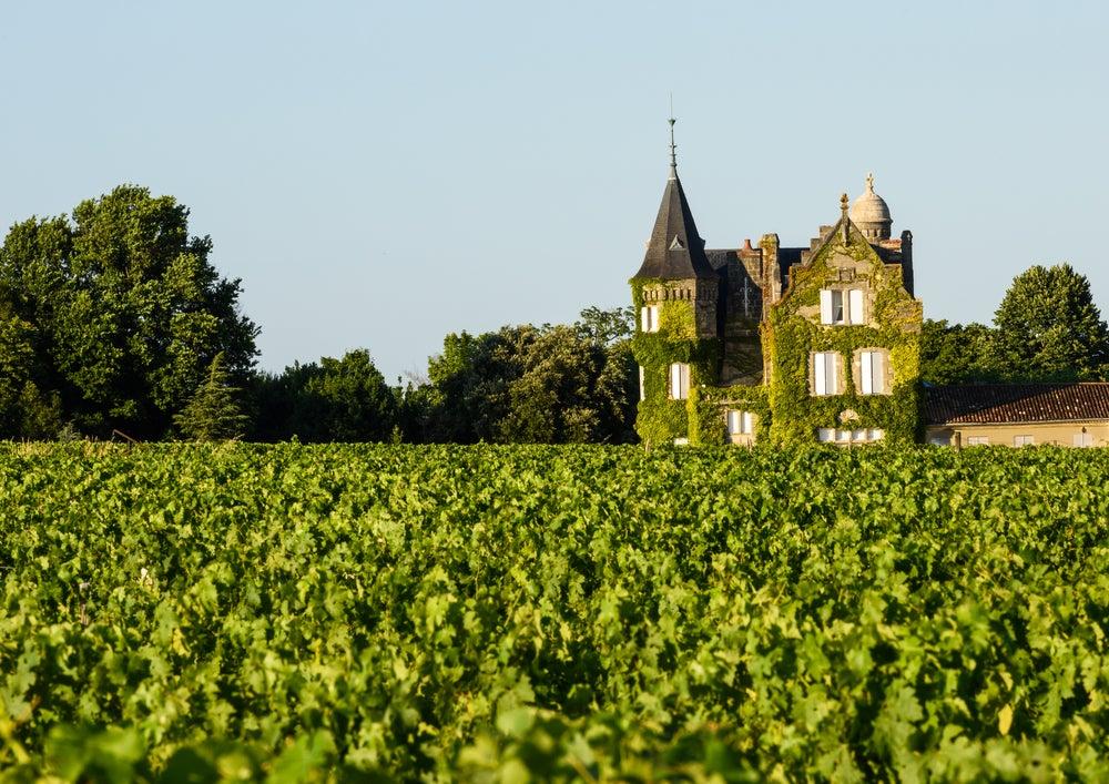 Unos de los castillos y viñedos más famosos de Burdeos