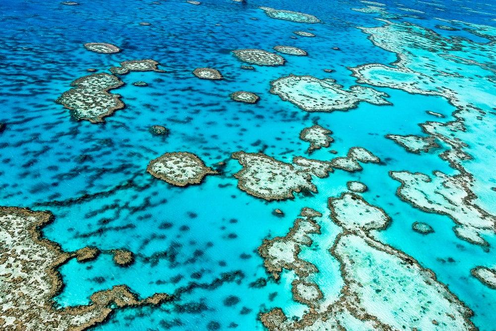 Gran Barrera de Coral en Australia