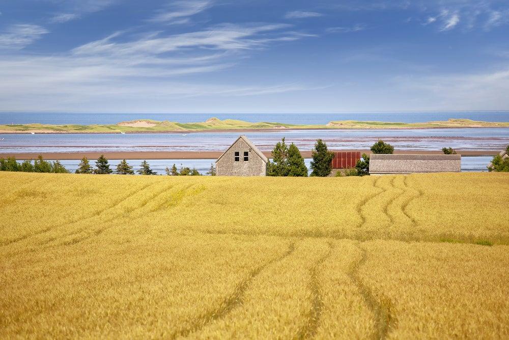 Isla del Príncipe Eduardo una de las cosas que ver al viajar a Canadá