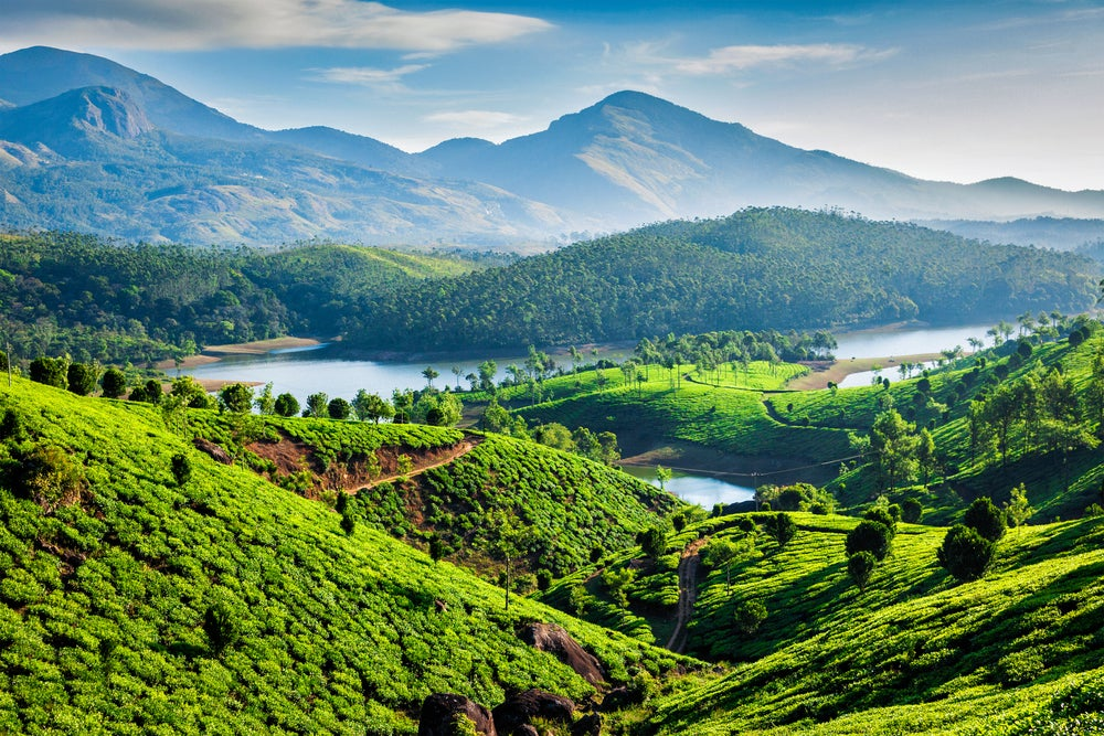 Kerala en un recorrido exótico por la India
