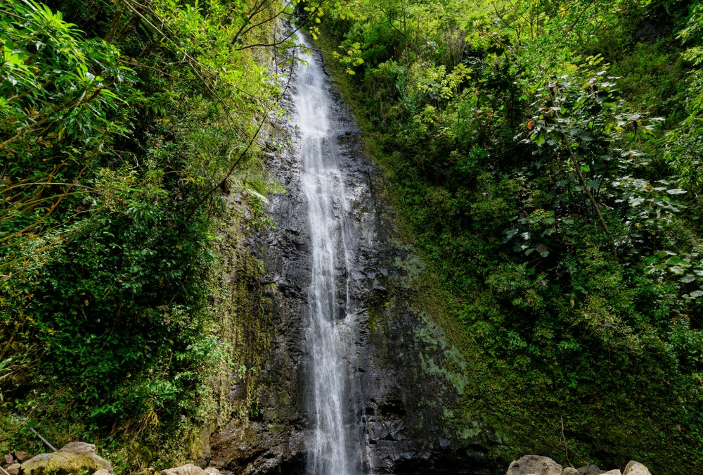 Manoa Falls en Hawai
