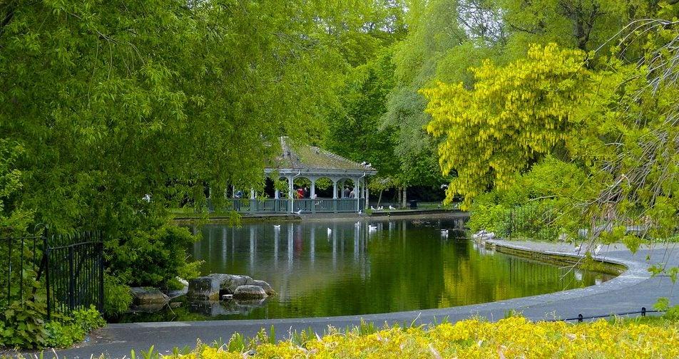 Parque Saint Stephens en un recorrido por Dublín
