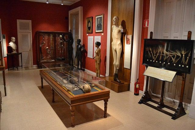 Sala de los Orígenes en el Museo Nacional de Antropología