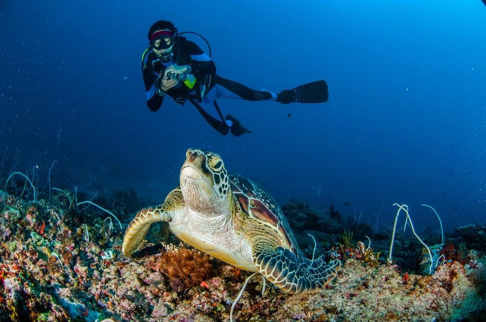 Submarinista en las islas Gili