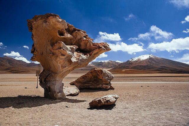 Árbol de piedra en Bolivia