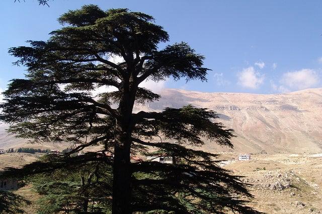 Bcharre en el Líbano