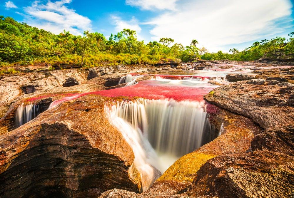 Visita el extraordinario ecosistema de Caño Cristales en Colombia