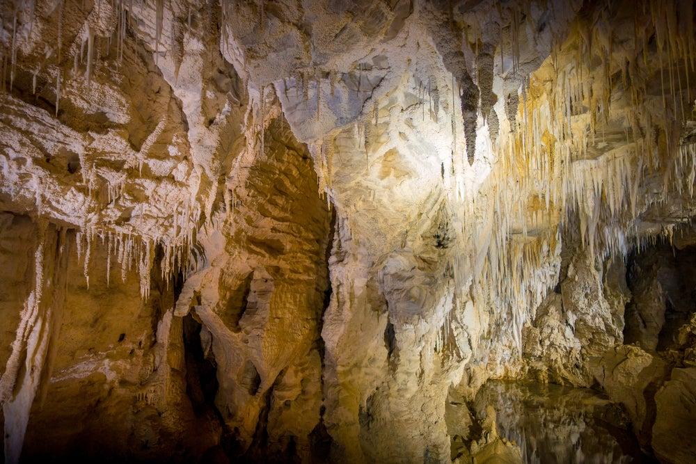 Cuevas de Waitomo Glowworm