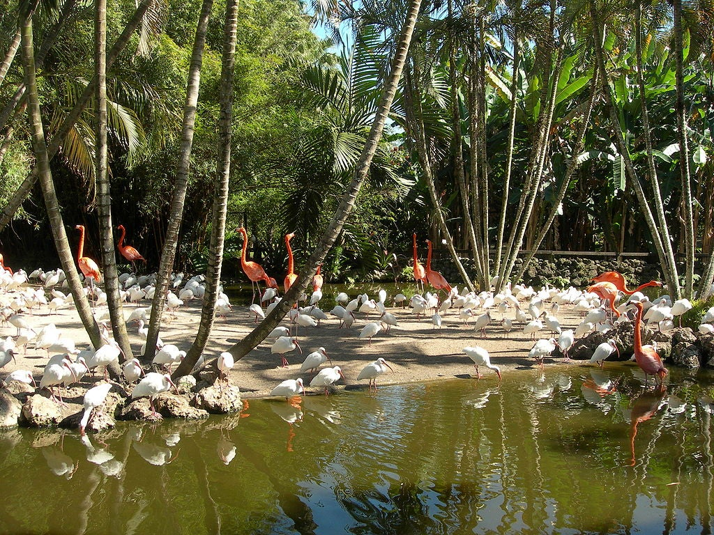 Flamingo Gardens en Fort Lauderdale