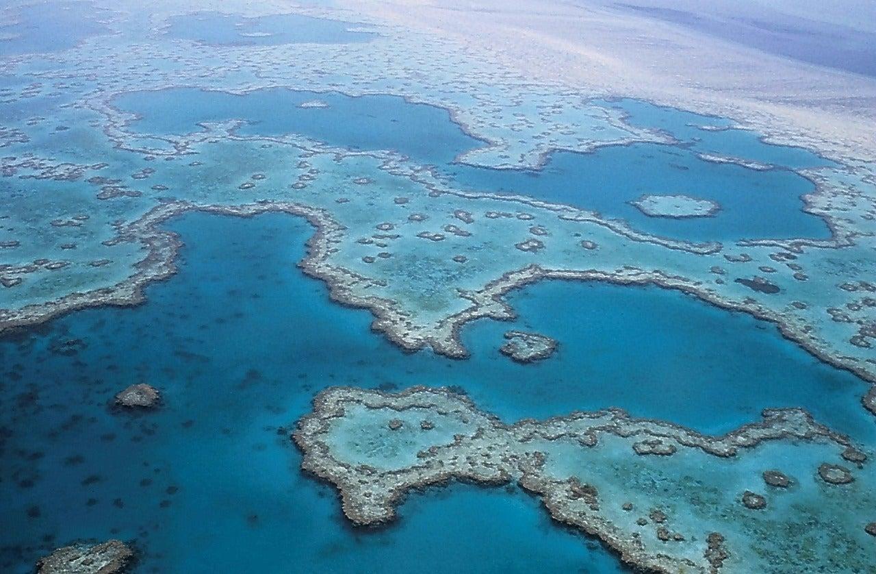 Vista de la Gran Barrera de Coral