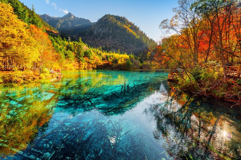 El lago de las Cinco Flores, un tesoro de la naturaleza en China