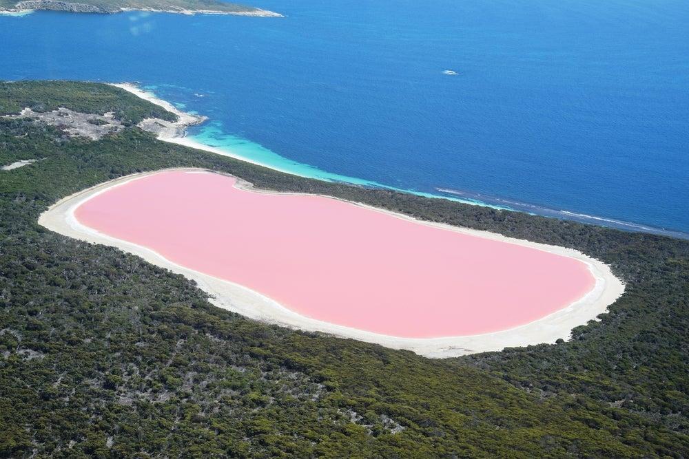 Descubre las increíbles aguas rosadas del lago Hillier en Australia