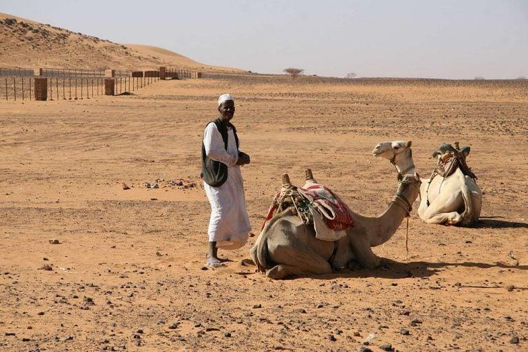 Los nubios, un pueblo casi desaparecido por el Nilo