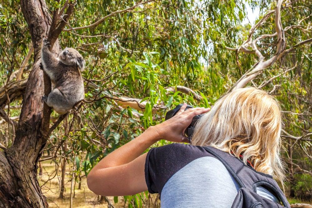 Phillip Island en Australia