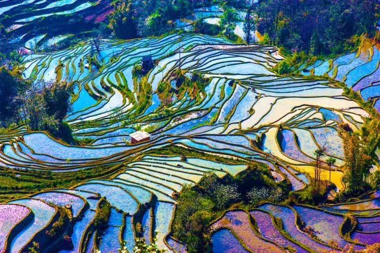Las increíbles vistas de las terrazas de arroz de Yuanyang en China