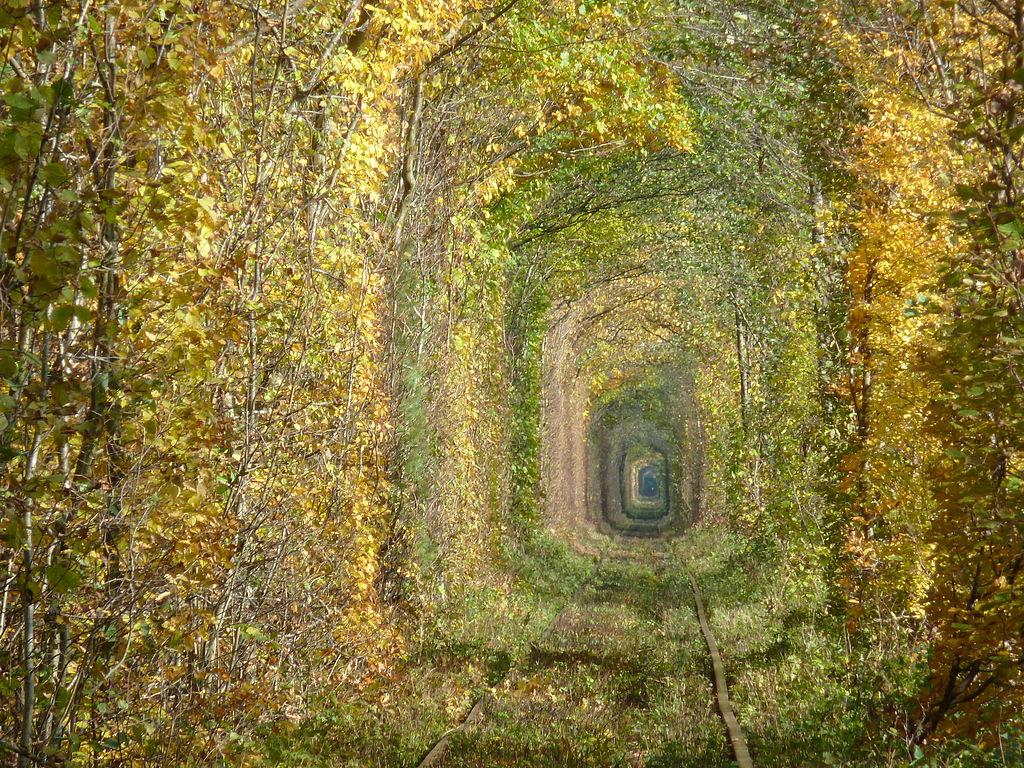 Túnel del Amor en otoño