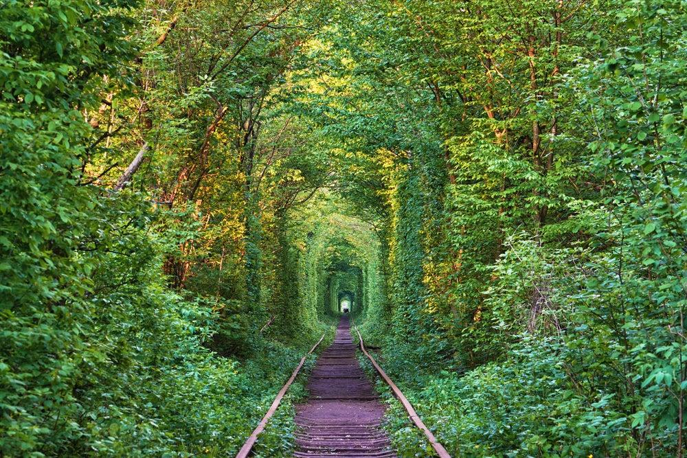 Nos vamos de viaje romántico al Túnel del Amor en Ucrania