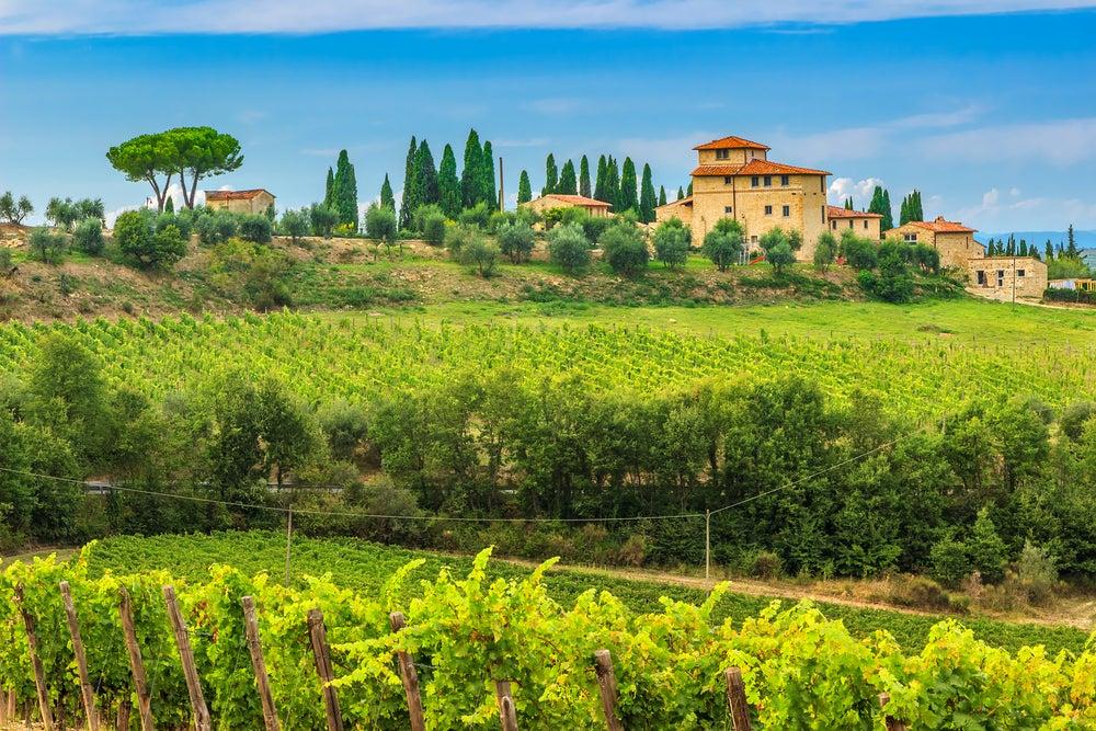 Viñedos en el valle de Chianti en un recorrido por la Toscana