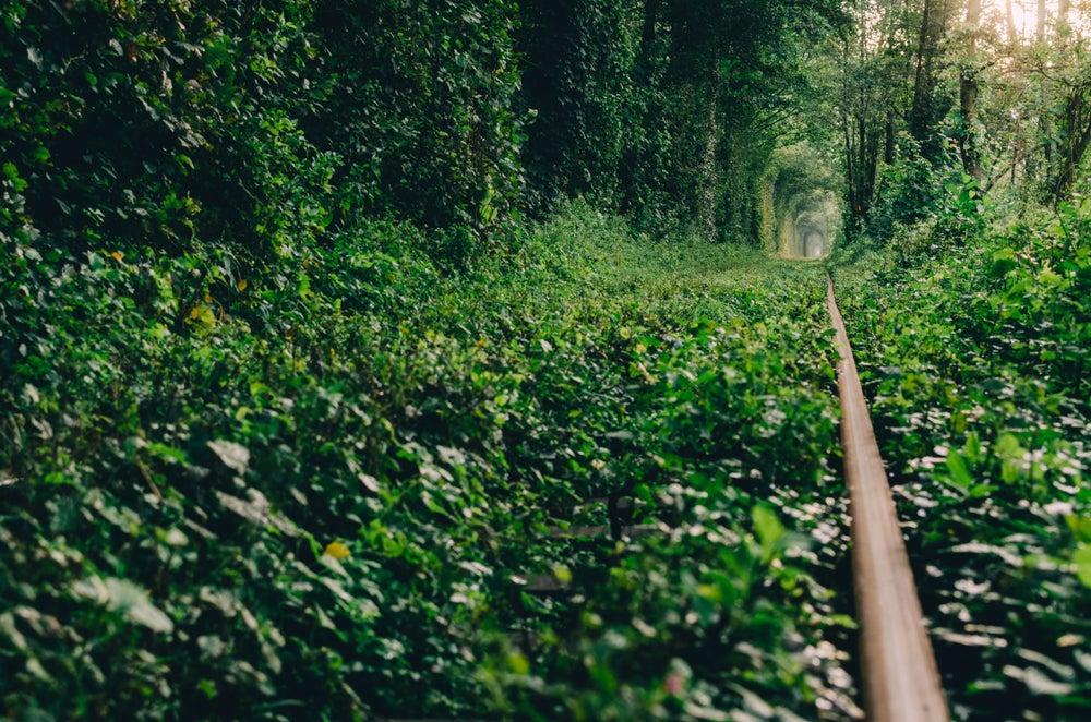 Vía de Túnel del Amor