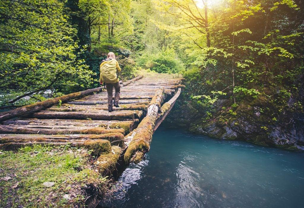 Viajero en un parque natural