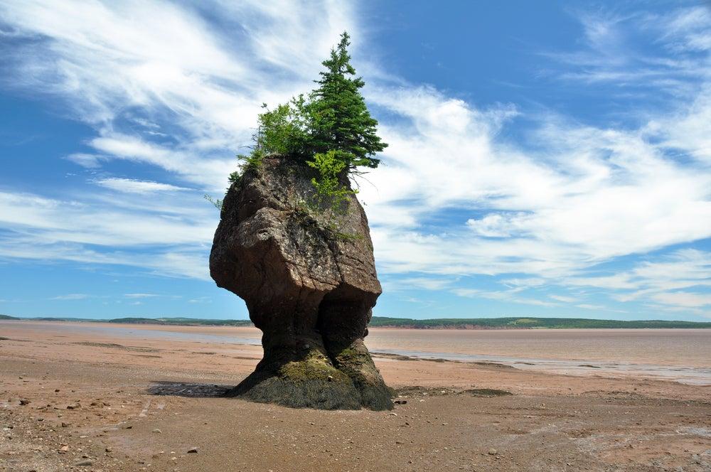 Bahía de Fundy en Canadá