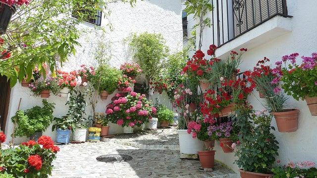 Calle de Pampaneira en Granada