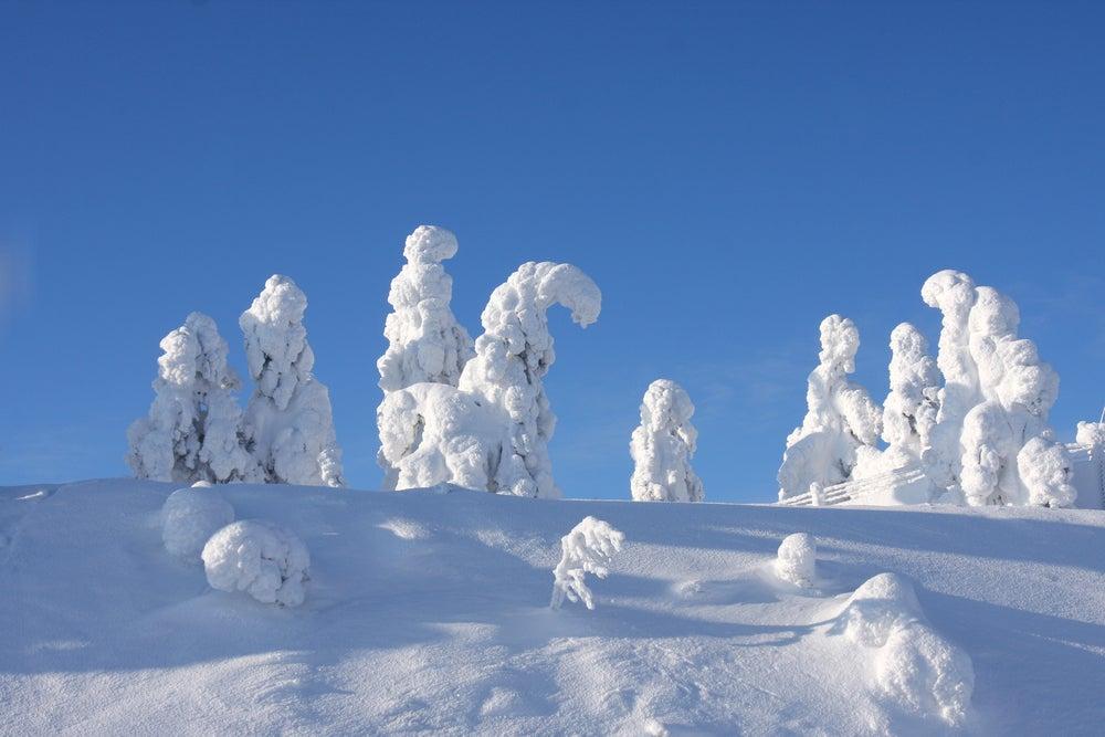 Centinelas del Ártico