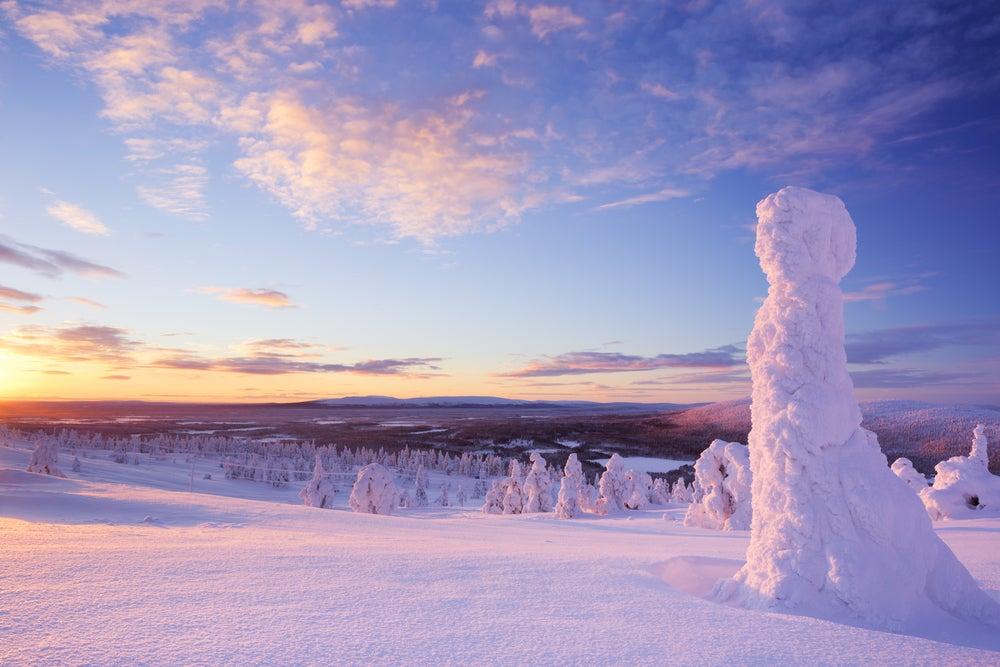 Centinelas del Ártico al atardecer