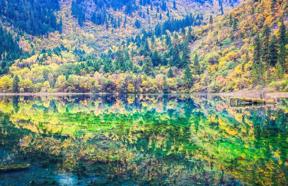 Reflejos en el lago de las Cinco Flores