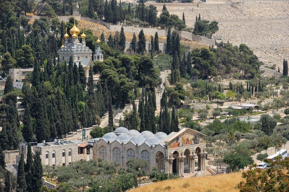 Monte de los Olivos en Jerusalén