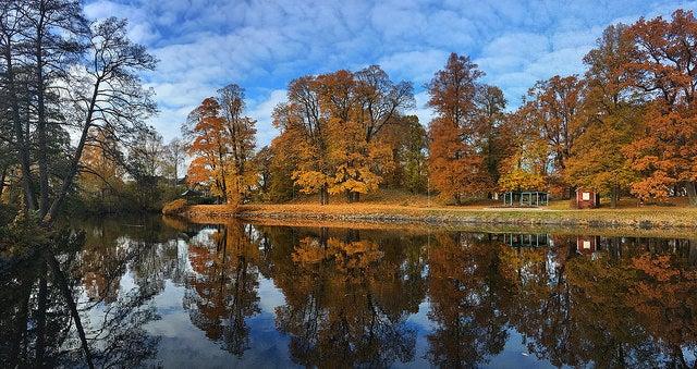Parque en Örebro
