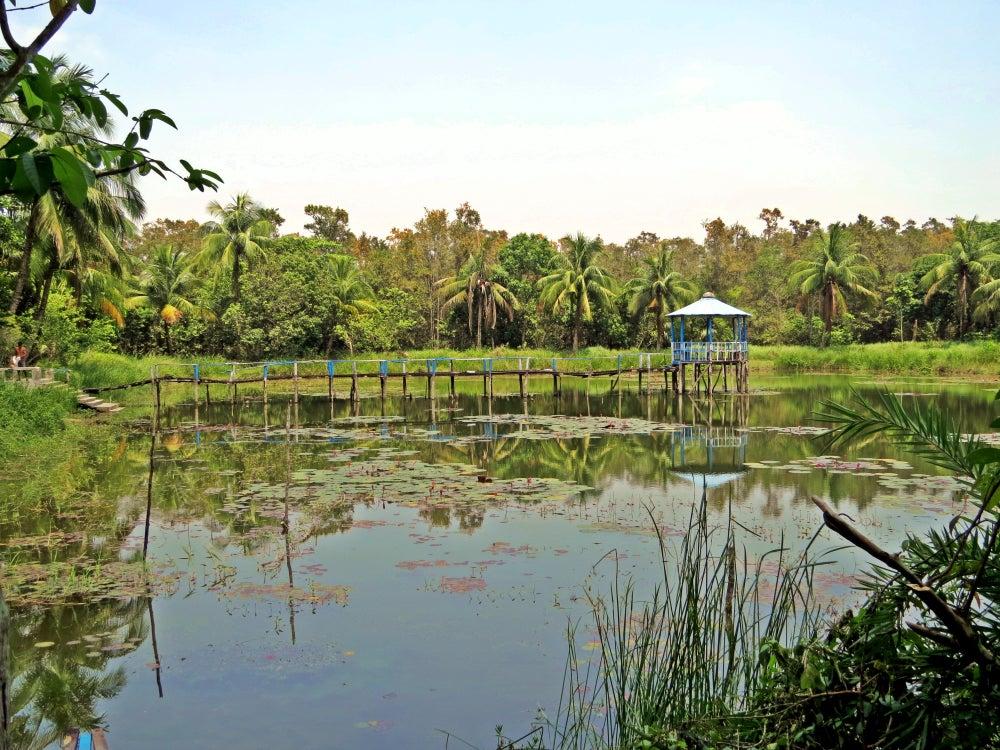 Manglares de Sundanbarns